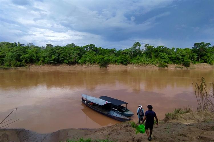ecolodge 117 acres rainforest - 10