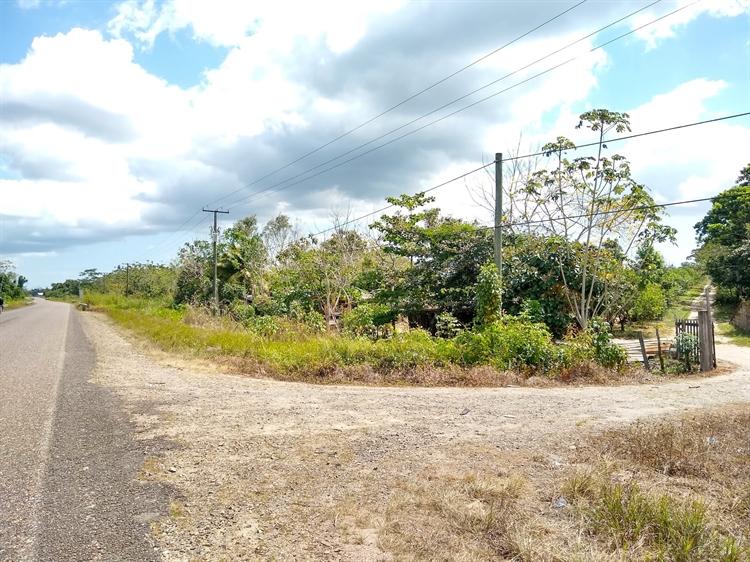 50 acres farm southern - 13