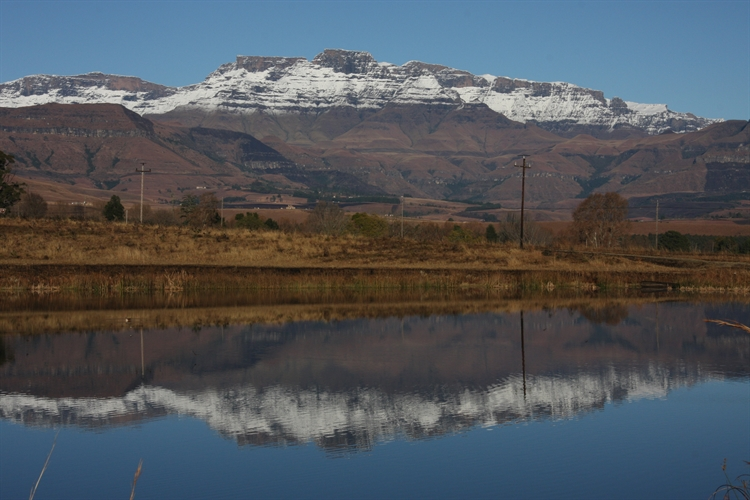 guest farm drakensberg with - 4