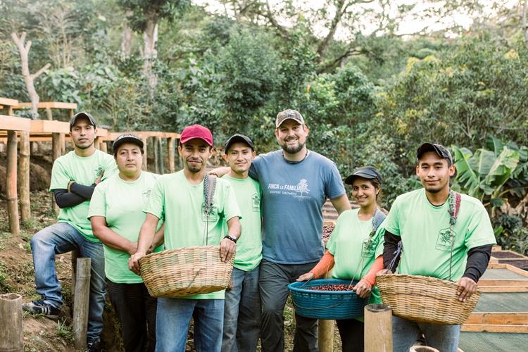 15 acre coffee farm - 4