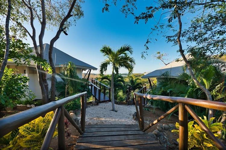 hotel resort playa avellanas - 5