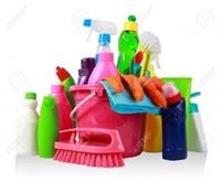 cleaning franchise new york - 1