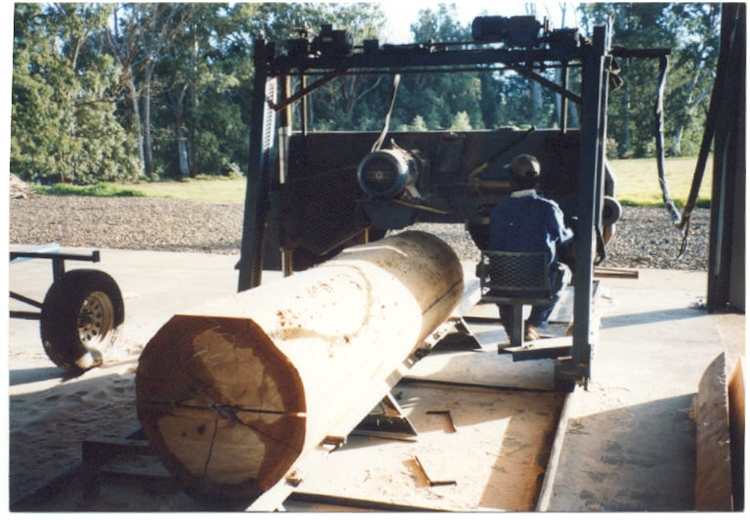 farm with forest sawmill - 4