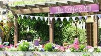 coffee shop tea garden - 3