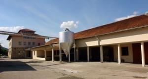 winery vineyards - 7