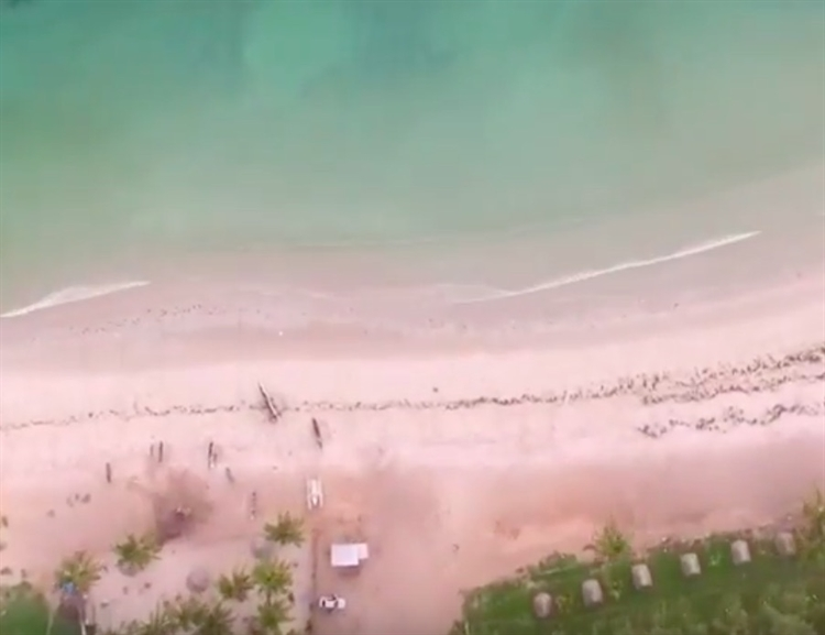 beachside hotel plot outside - 10