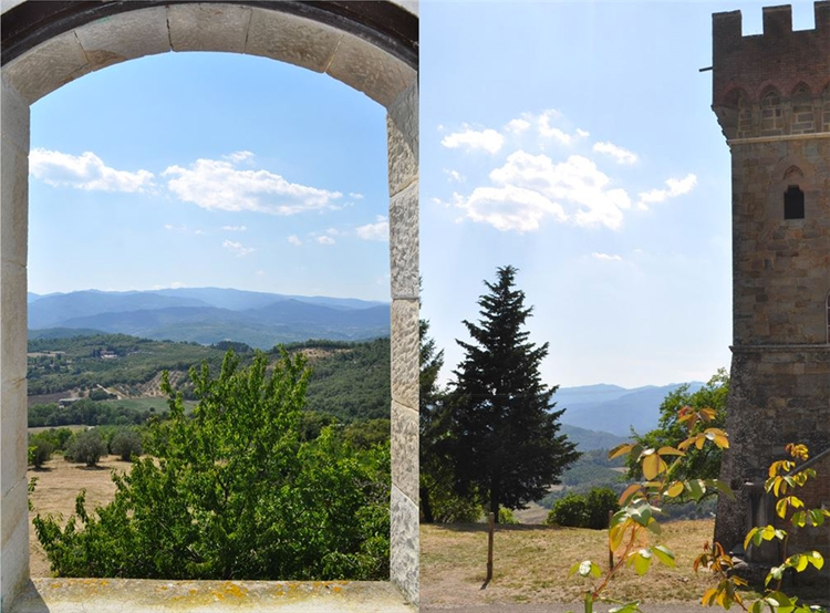 estate with 200 hectares - 8