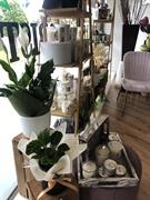 busy florist business somerville - 3
