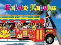 established profitable nightlife buses - 1
