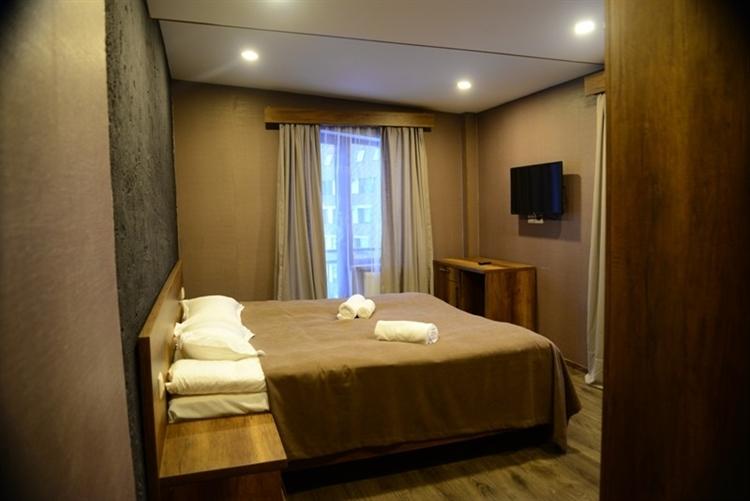 popular hotel bakuriani - 10