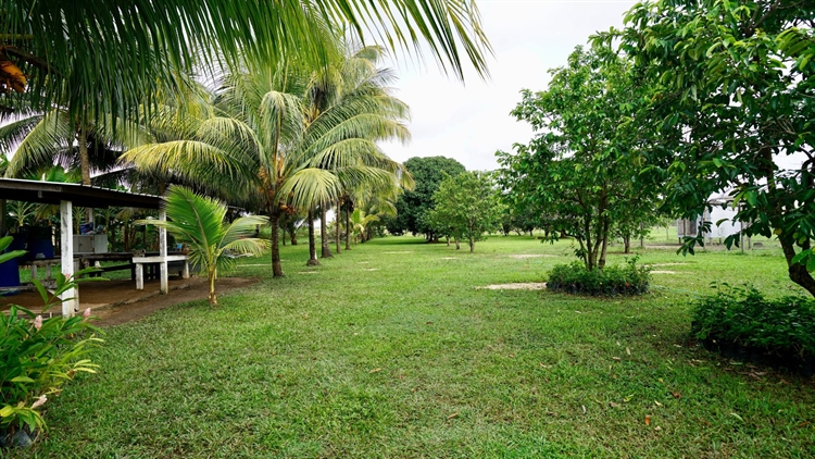 organic ranch farm property - 4