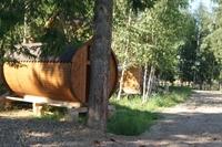 trees houses park suceava - 3