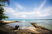 flourishing caribbean vacation villa - 3