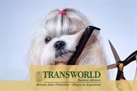 orlando dog grooming business - 1
