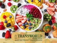 profitable restaurant café specializing - 1
