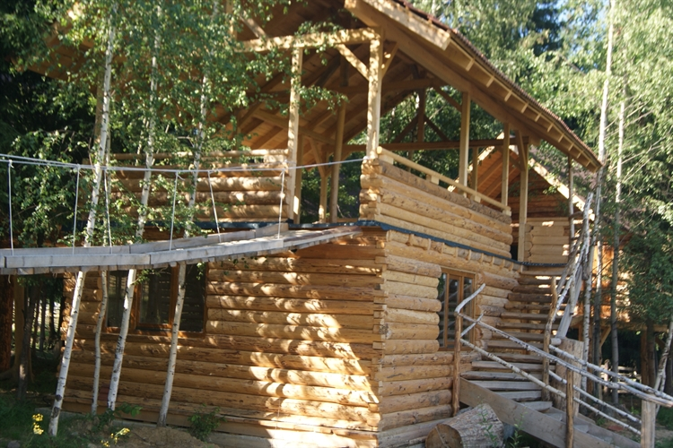 trees houses park suceava - 4