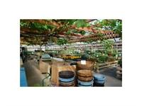 retail garden centre weddings - 2