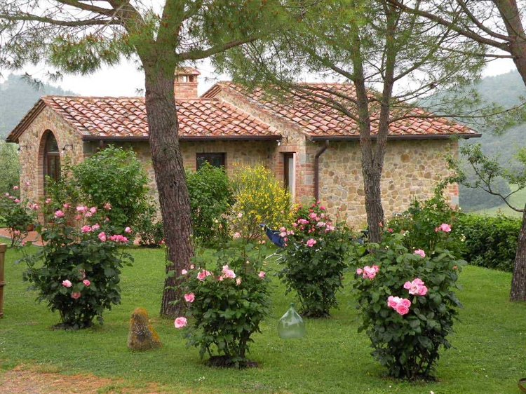 farm with 30 hectares - 6