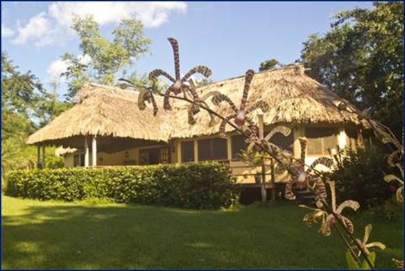 belize tropical jungle resort - 5