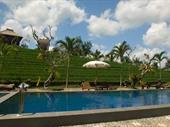 mountain resort bali
