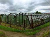 Horticultural Nursery Currently Ran As A Hobby For Sale