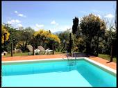Successful Holiday Farm/ B&B In Umbria Stone House For Sale