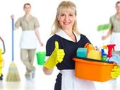 Residential Cleaning Franchise With Strong Cash Flow For Sale